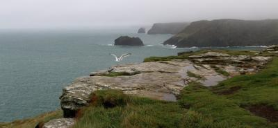 rocks-tintagel_0.jpg