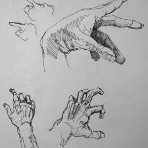 Hand studies - drawing