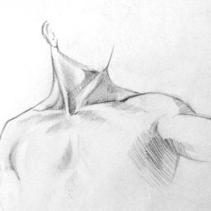 Study of chest / neck